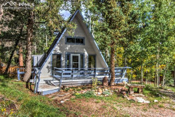 Photo of 101 Willow Road, Divide, CO 80814 (MLS # 7459422)