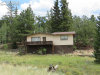 Photo of 60 Perch Drive, Lake George, CO 80827 (MLS # 7465429)