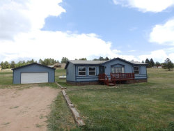 Photo of 160 Due South Road, Florissant, CO 80816 (MLS # 7689160)