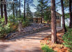 Photo of 545 Silhouette Way, Monument, CO 80132 (MLS # 7728203)