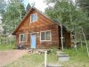 Photo of 45 Spruce Circle, Florissant, CO 80816 (MLS # 7831512)