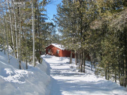 Photo of 679 Calcite, Divide, CO 80814 (MLS # 8179279)