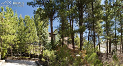 Photo of 17330 Caribou Drive, Monument, CO 80132 (MLS # 8237115)