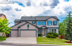 Photo of 4179 Apache Plume Drive, Colorado Springs, CO 80920 (MLS # 8656972)
