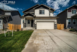 Photo of 9674 Rubicon Drive, Colorado Springs, CO 80925 (MLS # 8676792)