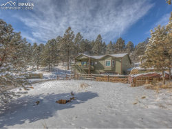 Photo of 449 Twin Lakes Drive, Divide, CO 80814 (MLS # 8683134)