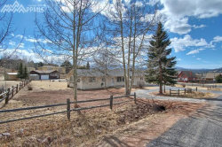 Photo of 1007 Forest Hill Road, Woodland Park, CO 80863 (MLS # 8750223)