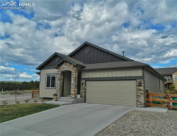 Photo of 743 Tailings Drive, Monument, CO 80132 (MLS # 8771648)