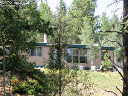 Photo of 410 Rangeview Road, Divide, CO 80814 (MLS # 8846687)