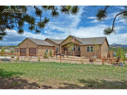 Photo of 121 Matterhorn Drive, Florissant, CO 80816 (MLS # 8903674)