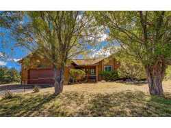 Photo of 220 Emerson Court, Woodland Park, CO 80863 (MLS # 8914708)
