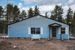 Photo of 107 Chuck Wagon Drive, Florissant, CO 80816 (MLS # 8989289)