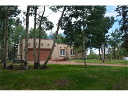 Photo of 270 Elfin Glen Drive, Divide, CO 80814 (MLS # 9023382)