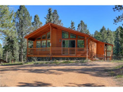 Photo of 475 Paint Pony Lane, Florissant, CO 80816 (MLS # 9209948)