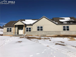 Photo of 2822 Waterfront Drive, Monument, CO 80132 (MLS # 9263885)