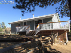Photo of 109 Silbani Lane, Divide, CO 80814 (MLS # 9386616)