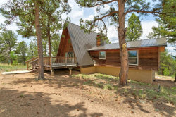 Photo of 4561 W Highway 24, Florissant, CO 80816 (MLS # 9449292)