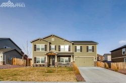Photo of 10667 McGahan Drive, Fountain, CO 80817 (MLS # 9455259)