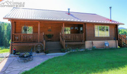 Photo of 643 Divide South Drive, Divide, CO 80814 (MLS # 9565833)