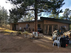 Photo of 230 S Forty Road, Woodland Park, CO 80863 (MLS # 9684176)