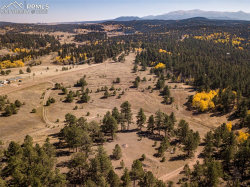 Photo of 2754 Upper Twin Rocks Road, Divide, CO 80816 (MLS # 9731559)