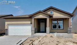 Photo of 9694 Vistas Park Drive, Peyton, CO 80831 (MLS # 9817868)