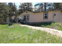 Photo of 3359 Pikes Peak Drive, Florissant, CO 80816 (MLS # 9886336)