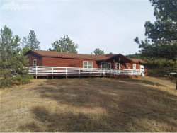 Photo of Wildhorn Road, Florissant, CO 80816 (MLS # 9910422)
