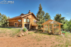 Photo of 470 Highroad Drive, Divide, CO 80814 (MLS # 9973340)