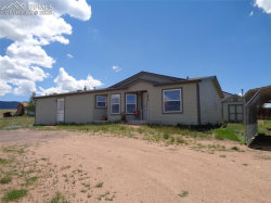 Photo of 1450 Will Scarlet Drive, Divide, CO 80814 (MLS # 7012991)