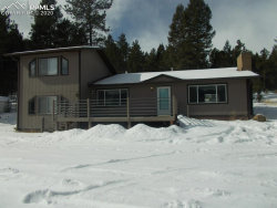 Photo of 1031 Old Wagon Trail, Woodland Park, CO 80863 (MLS # 8638644)