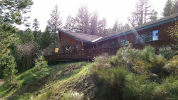 Photo of 941 W Mountain Road, Cascade, ID 83611 (MLS # 98655039)