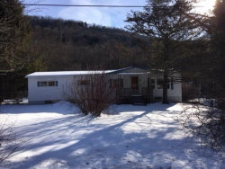 Photo of 1322 Trout Brook, NY 13755 (MLS # 4219960)