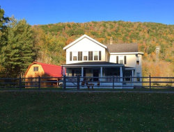 Photo of 227 Cooksfalls, Roscoe, NY 12776 (MLS # 4220302)