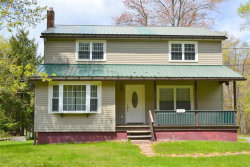 Photo of 1149 Hankins Road, Roscoe, NY 12776 (MLS # 4220641)