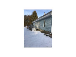 Photo of 221 Rod And Gun Club Road, Forestburgh, NY 12777 (MLS # 4651915)