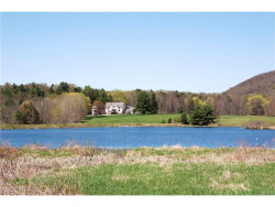 Photo of 66 Willowbrook Lane, call Listing Agent, NY 12529 (MLS # 4720318)