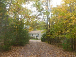 Photo of 99 York Lake Road, Barryville, NY 12719 (MLS # 4721674)