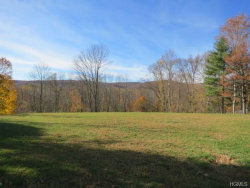 Photo of 23 Astor Place, Monsey, NY 10952 (MLS # 4727014)
