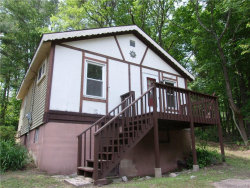 Photo of 927 State Route 42, Sparrowbush, NY 12780 (MLS # 4732014)