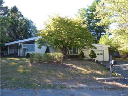 Photo of 36 Floral Drive, Thompsonville, NY 12701 (MLS # 4734553)