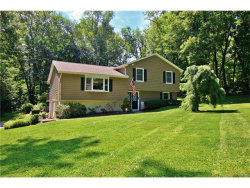 Photo of 16 Nathan Hale Drive, Stormville, NY 12582 (MLS # 4734870)
