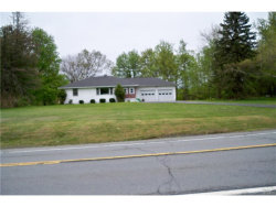 Photo of 555 State Route 52, Woodbourne, NY 12788 (MLS # 4737015)