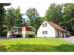 Photo of 181 Franke Road, Huguenot, NY 12746 (MLS # 4737484)