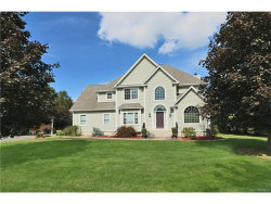 Photo of 55 Guinness Way, Hopewell Junction, NY 12533 (MLS # 4742761)
