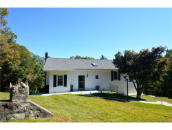 Photo of 11 Sycamore Lane, Patterson, NY 12563 (MLS # 4743618)