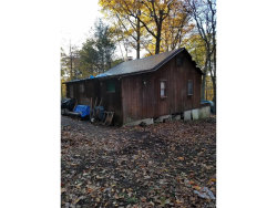 Photo of 4 Echo Trail, Monroe, NY 10950 (MLS # 4749232)