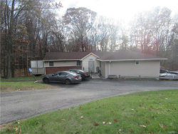 Photo of 14 Raywood Drive, Monroe, NY 10950 (MLS # 4750045)