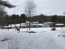 Photo of 3557 STATE ROUTE 209, Wurtsboro, NY 12790 (MLS # 4751215)