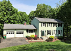Photo of 7 Nanuk Road, Hopewell Junction, NY 12533 (MLS # 4809774)